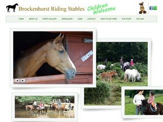 brockenhurstridingstables.co.uk-logo