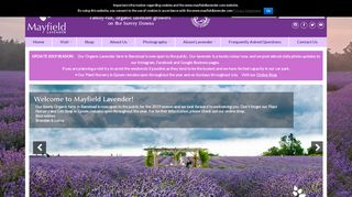 /business/mayfieldlavender.com